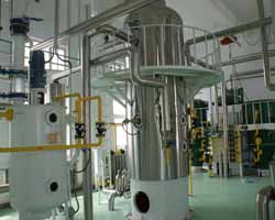 Maize Oil Processing