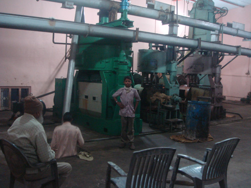 Oil Seed Extraction Machinery