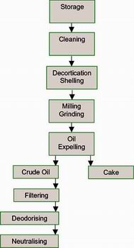 Oil Processing Process