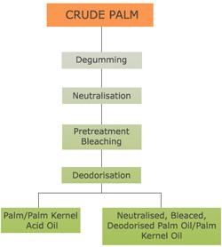 Palm Oil Refining