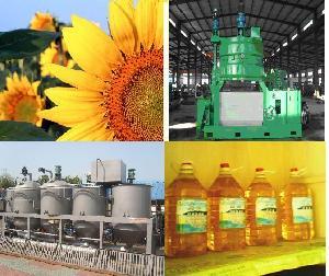 Sunflower Oil Processing Plant