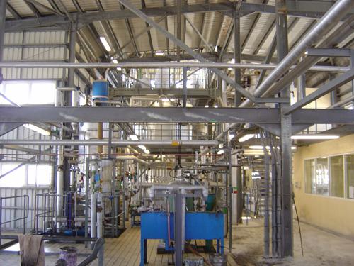 Edible Oil Plants : Want to establish a vegetable oil factory