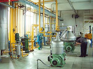 corn oil plant