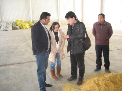 corn oil production plant