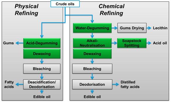 crude oil processed