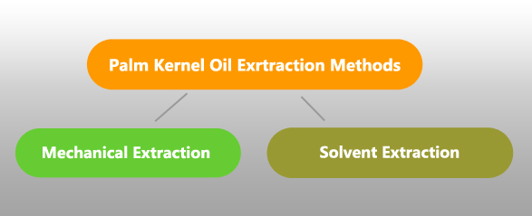 ways of extracting palm kernel oil