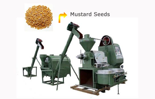 small scale mustard seed oil extraction plant
