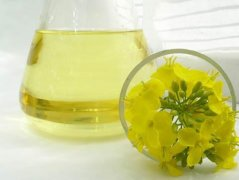 Canola Oil Processing