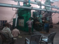 Oil Seed Extraction Plant in India