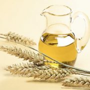 wheat germ oil extraction