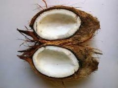 coconut oil manufacturing process