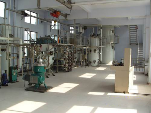 palm oil milling process plant