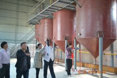peanut oil processing line